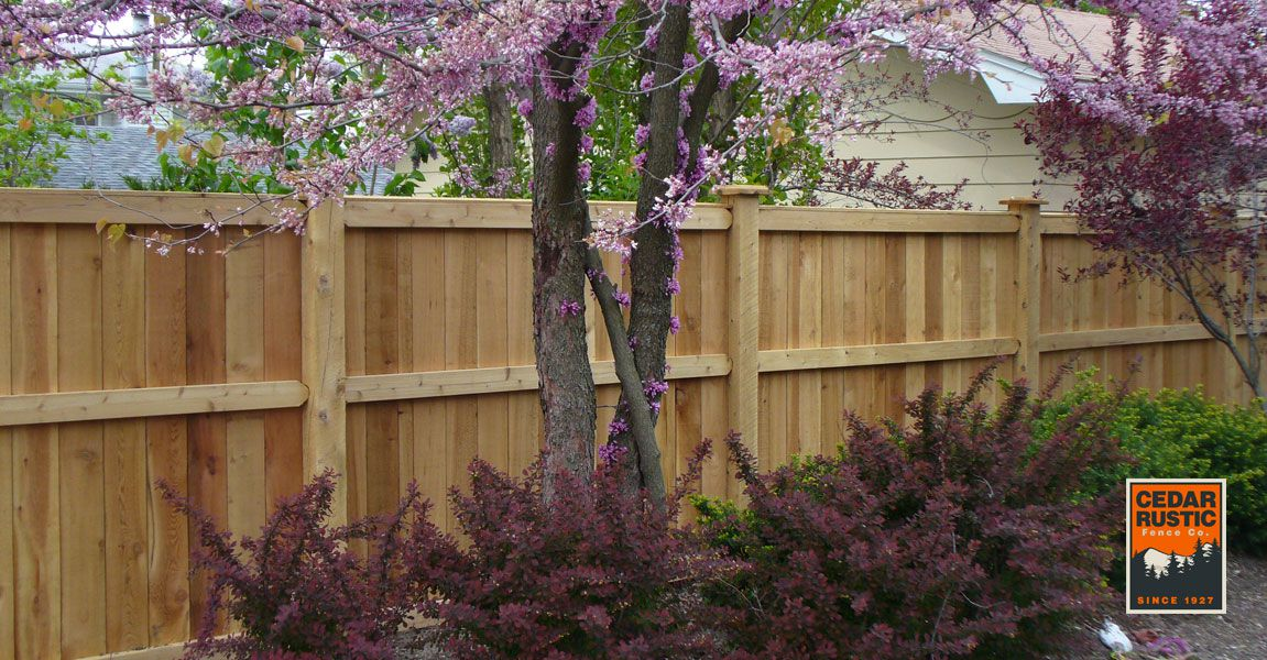 Traditional Privacy Fence Cedar Rustic Fence Co