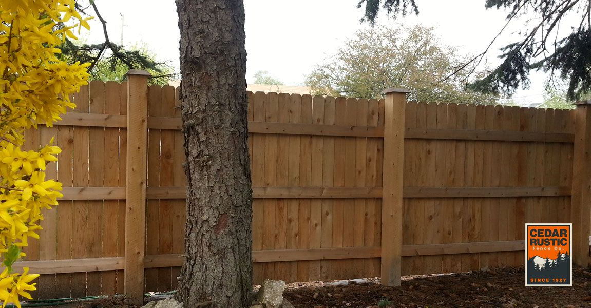 Dog Eared Privacy Fence With Beveled Caps Cedar Rustic